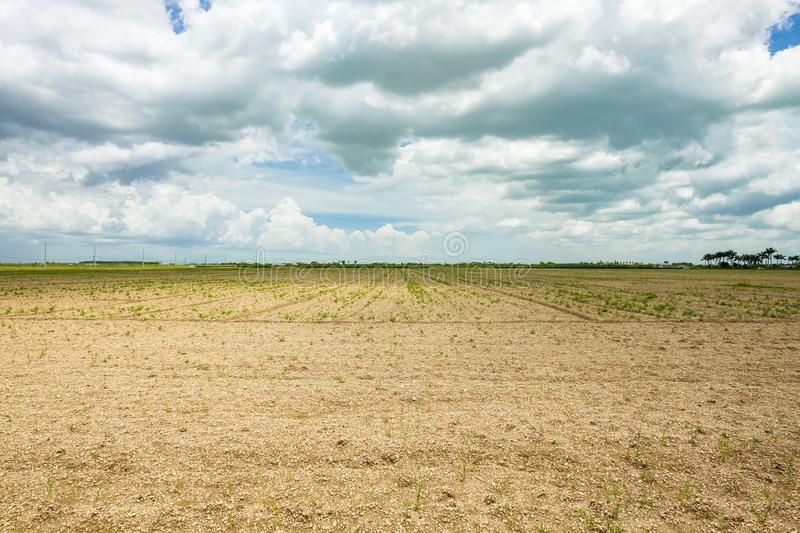 неурожайное-поле-земледелия-120137687